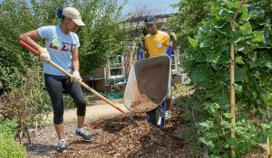 Campus Weekly: Eleven sites, service projects on Spartan Service Day
